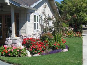 color flower beds
