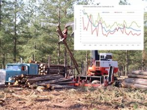 Forestry - timber sales