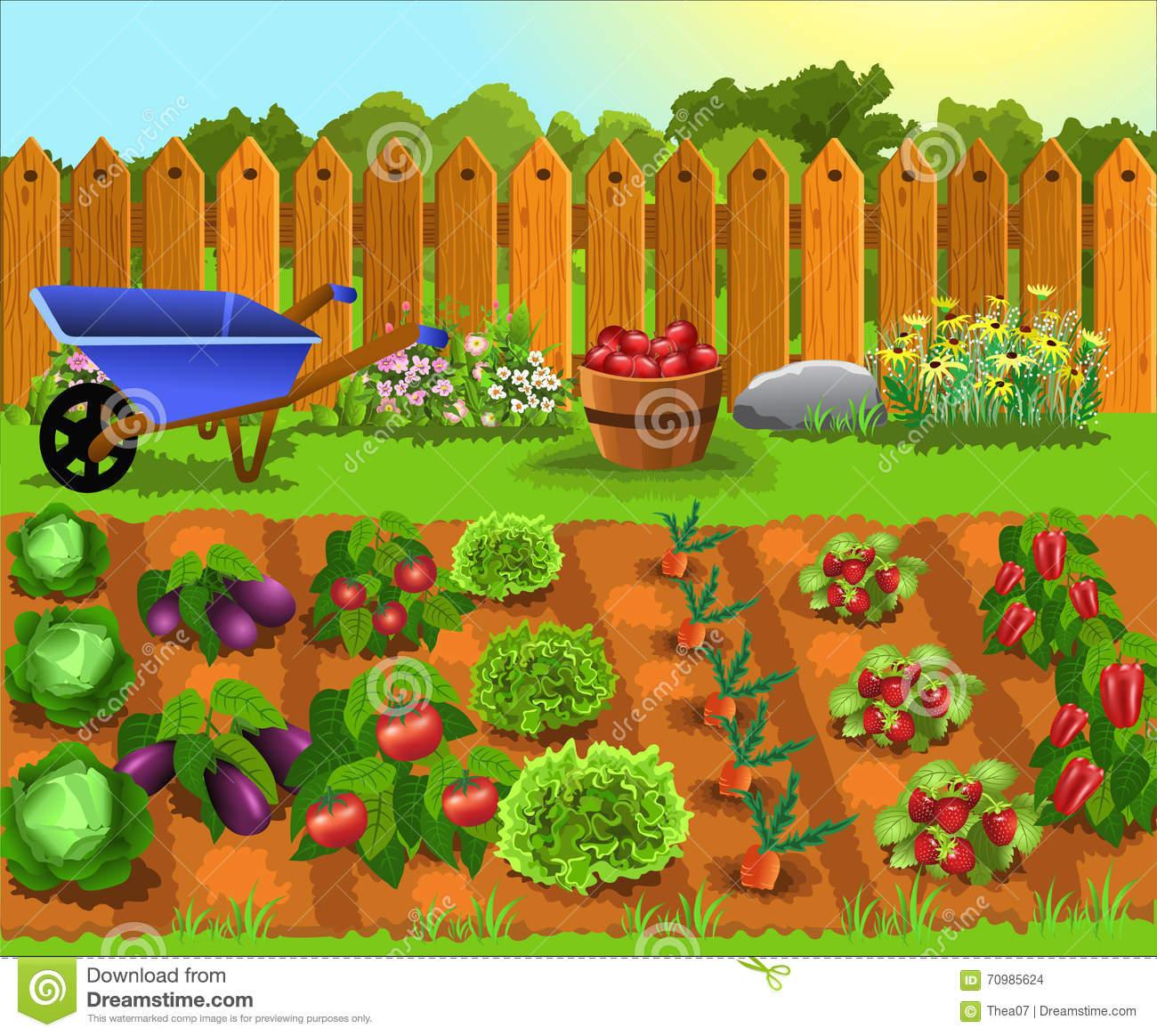 4-H Garden