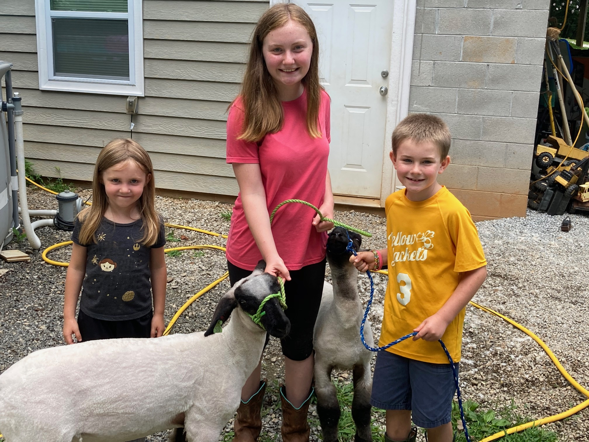 Kids with lambs