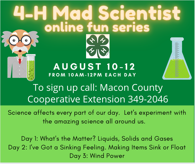 4-H Mad Scientist Flyer