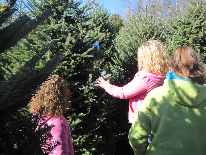 Mom and Two Daughters picking our their perfect Christmas Tree