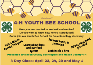Youth Bee School Flyer