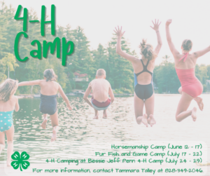 Cover photo for 4-H Camp Is Already on Our Minds!