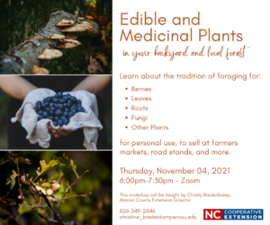 Cover photo for Edibles and Medicinal Plants in Your Backyard and Forest